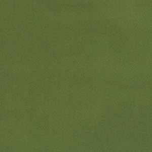 04770 Grass