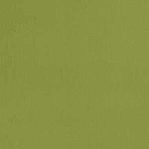 04770 Lime