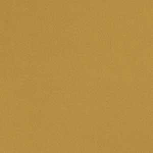 04770 Golden