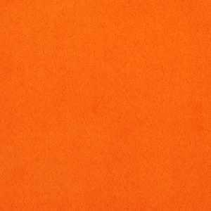 Cassidy Orange