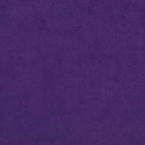 Cassidy Grape