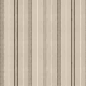 Argos Stripe Platinum