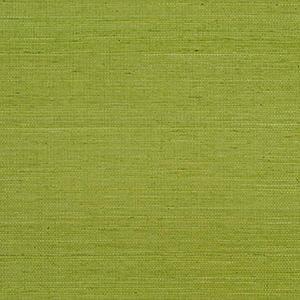 Sisal Grass