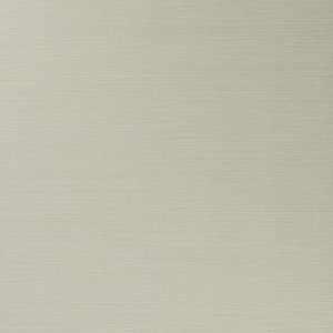50299W Salix Ecru 01