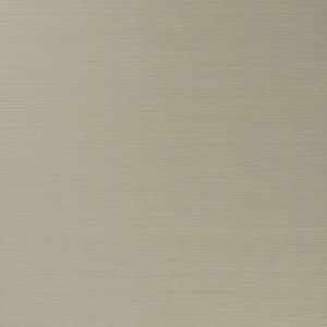 50299W Salix Buff 08