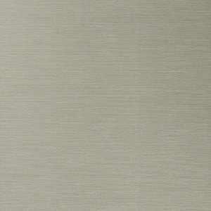 50299W Salix Elephant 16