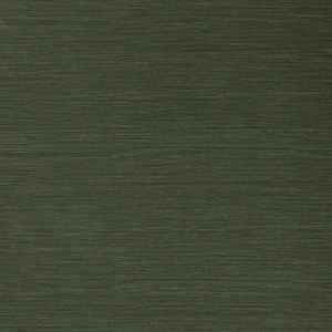 50299W Salix Army 18