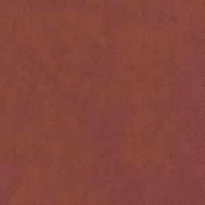 04940 Terra
