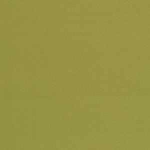 Douppioni Silk Chartreuse