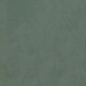 Topaz Lichen