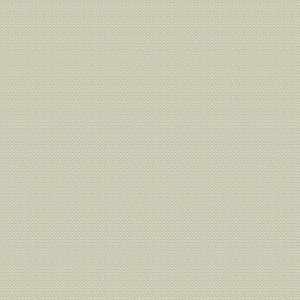 04967 Ivory