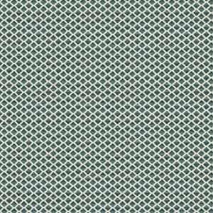 Kanpur Diamond 03