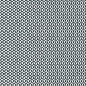 Kanpur Diamond 05