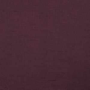 Velvet Glam Anemone