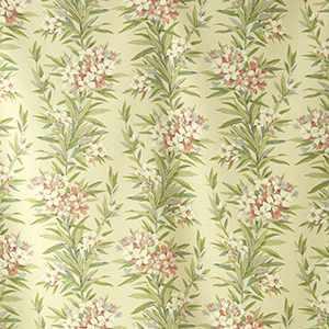 Oleander | Rose