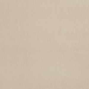 Avonlea Parchment
