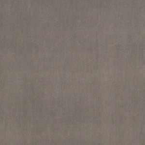 Avonlea Grey