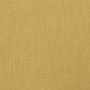 Monterey Wheat