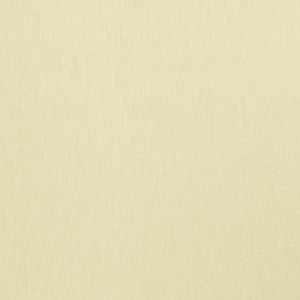 Wrangler Parchment