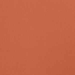 Wrangler Apricot