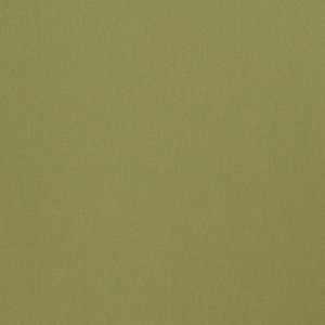 Wrangler Lime