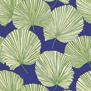 Fan Palm WP 505