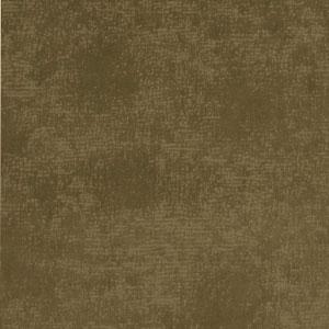 03584 Hedge
