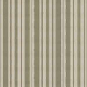 Tippet Cypress