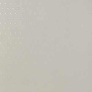 50039W Adley Champagne 03