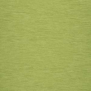 03703 Lime