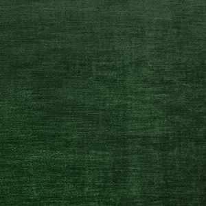 Bellagio Evergreen