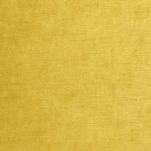 Vienna Velvet Gold