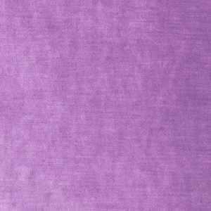 Vienna Velvet Purple