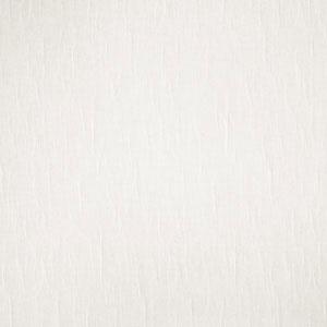 02562 Ivory