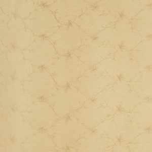 02665 Cream