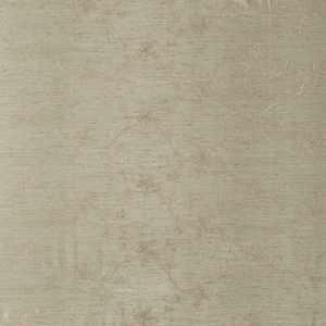 02665 Eucalyptus