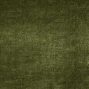 02633 Grass