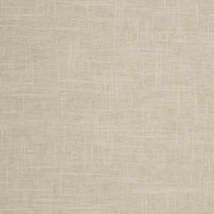 Pacific Linen Dove