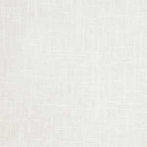 Pacific Linen Oyster