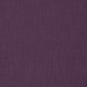 Capri Purple