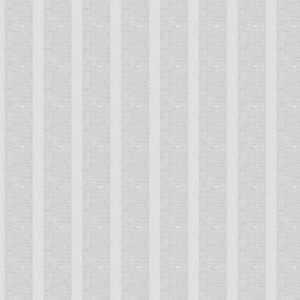 Earn Stripes White