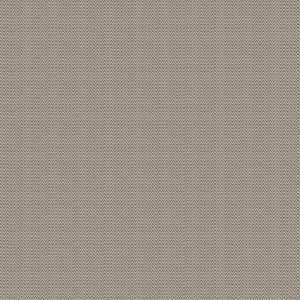 04219 Grey
