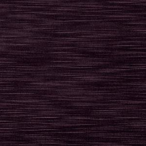 04250 Eggplant