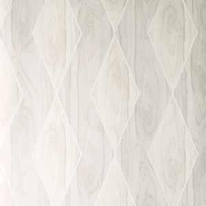 75188W Alpinia Whitewash 04