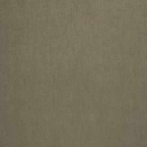 04465 Taupe