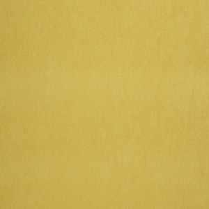 04465 Gold