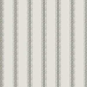 Enzyme Stripe Mineral