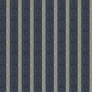 Claymont Stripe Indigo