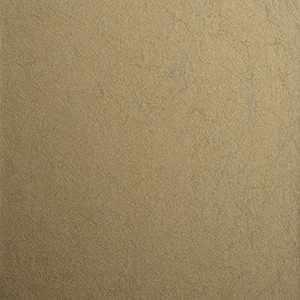 75201W Alizeh 510