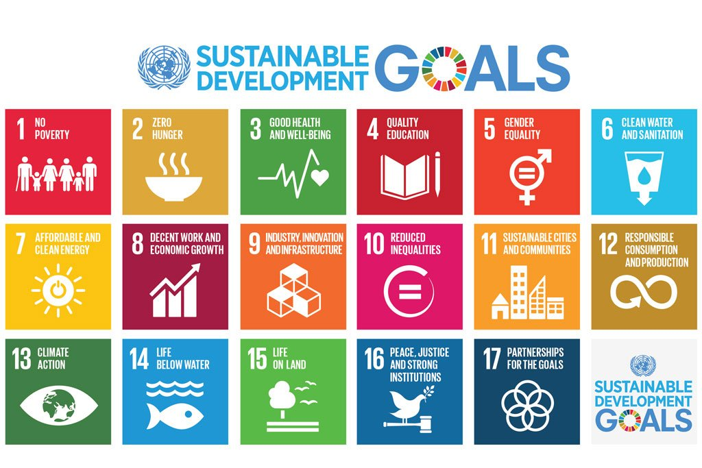 The SDGs are the 17 goals towards which all United Nations efforts will now work